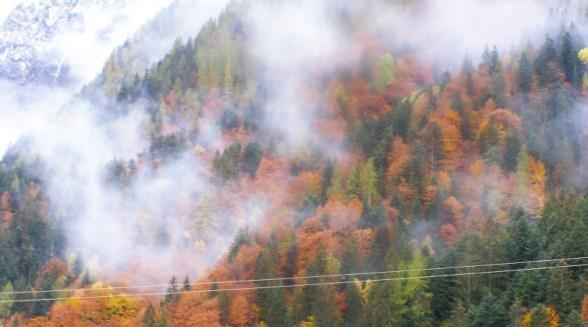 autunno-013.jpg